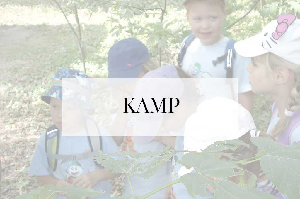 kamp_tekst-magla_main